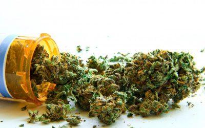Impact of Medical Marijuana Laws