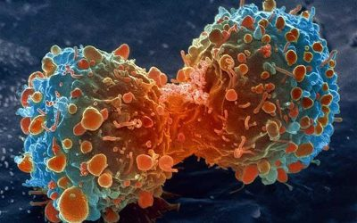 """""""Alternative"""" Treatments for Cancer"""