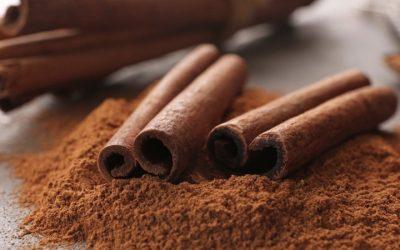 Does Cinnamon Burn Extra Calories?