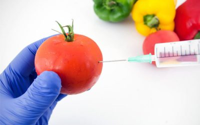 Gene-editing Technology To Remain Unregulated